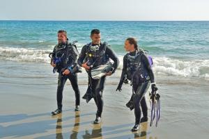 Shore and Beach Diver